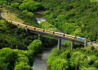 Taieri Gorge Railway and the Otago Peninsula Day Trip from Dunedin, Dunedin Tours and Sightseeing