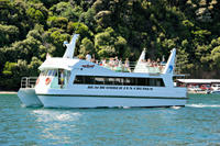 Marlborough Sounds Cruise from Picton, Picton Tours and Sightseeing