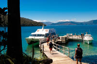 Queen Charlotte Sound Mail Boat Cruise, Picton Tours and Sightseeing