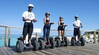 Blue Lagoon Segway Safari Tour image 1