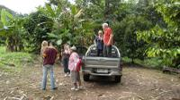 Private Tour: 4x4 Rainforest Adventure from Bangkok Including Elephant Ride Private Car Transfers