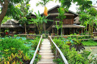 Private Tour: Mae Kampong Village from Chiang Mai Private Car Transfers
