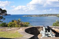 Sydney City Tour Including Bondi Beach, Watsons Bay, Balmoral Beach with Optional Taronga Zoo Entry Ticket image 1