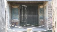 Pompeii: Guided Small Group Tour