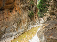 Imbros Gorge Hiking Day Trip Including Traditional Cretan Snack