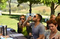 Hunter Valley Wine Tour with Cheese Chocolate Distillery and Lunch
