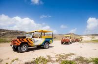 4x4 Tour and Natural Pool Snorkeling in Aruba Including Lunch or Dinner image 1