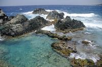 Aruba Shore Excursion: 4x4 Tour and Natural Pool Snorkeling