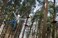 High Ropes Experience from Interlaken Including BASE Jump Simulator and Zipline