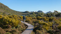 Hartz Mountains and Tahune Airwalk - private sightseeing and photography tour from Hobart
