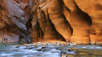 Zion National Park Flight and Ground Tour