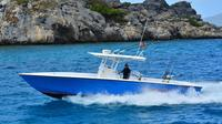 6 Hour Private Fishing Charter St Thomas