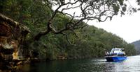 Ku-ring-gai Chase National Park Day Trip from Sydney, Sydney City Tours and Sightseeing