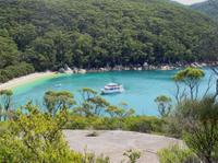 Wilsons Promontory Cruise from Phillip Island  image 1