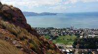 Shore Excursion: Scenic and History Tour of Townsville with Options to Include Billabong Sanctuary or Reef HQ Aquarium