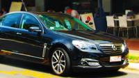 Private Transfer: Cairns Airport to Mareeba