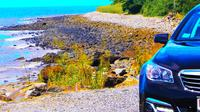 Private Transfer: Port Douglas to Cairns Airport