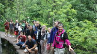 Plitvice Lakes Small-Group Tour from Zagreb with Transfer to Split