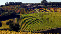 Montefalco and Bevagna Full-day Tour and Wine Tasting