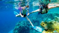 Group Tour to Best Snorkeling in Taba Egypt