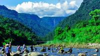 Private Tour: Sylhet Full-Day Tour of Ratargul and Bisnakandi image 1