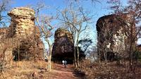 Full-Day Private Tour from Bhopal to Bhojpur and Bhimbetka