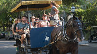 Private Historic Carriage Tour of Charleston - Charleston -