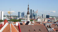 Shore Excursion: Best of Tallinn in a Small Group