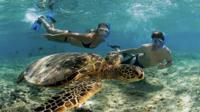 Private Snorkel Yacht Cruise
