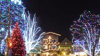 Christmas Lights Leavenworth Tour from Seattle