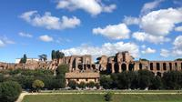 Full-Day Small-Group Sightseeing Tour of Rome With Pickup from Civitavecchia Port
