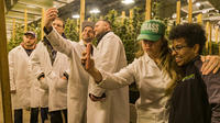 The Kush Tour - Glass, Garden, Extraction and More!