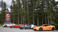 Sea to Sky Exotic Driving: Whistler Experience