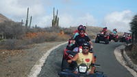 Aruba Shore Excursion: ATV Island Sightseeing Adventure