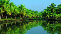 Group Shore Excursion: Backwater Houseboat Tour and Fort Kochi from Cochin Port  Private Car Transfers