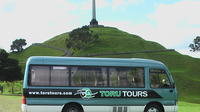 3-Hour Auckland Express Tour, Auckland CBD Tours and Sightseeing