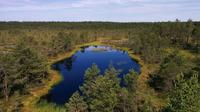Lahemaa National Park Full Day Tour from Tallinn