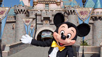 Private Charter to Disneyland with Japanese Speaker