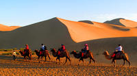 Small Group Dunhuang Day Tour including Camel Ride, Mo Gao Caves, Crescent Spring and Singing Sand Dunes
