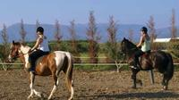 Horse Riding Experience in Nafplio