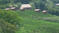 The Hidden Trail of Muong Hoa Valley Half-Day Tour from Sapa