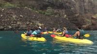 2-Hour Guided Kayak or Paddle Board Tour of Scarborough\'s Jurassic Coastline