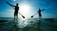 Paddle Board Rental in Scarborough