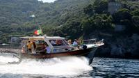 Positano and Amalfi Coast Boat Tour from Sorrento