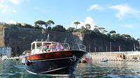 Private Capri Boat Tour from Sorrento