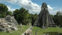 Private Tikal Maya City Tour Including Lunch image 1