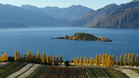 Wine Tour with Wine Tasting from Wanaka, Wanaka Wineries & Vineyards