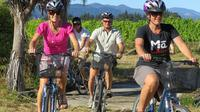 Deluxe Full-Day Marlborough Wine Region Guided Bike Tour, Blenheim Wineries & Vineyards