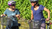 Full-Day Marlborough Wine Region Guided Bike Tour, Blenheim Wineries & Vineyards