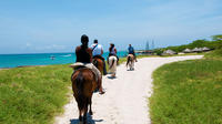 Aruba Horseback Riding and Snorkeling Tour image 1
